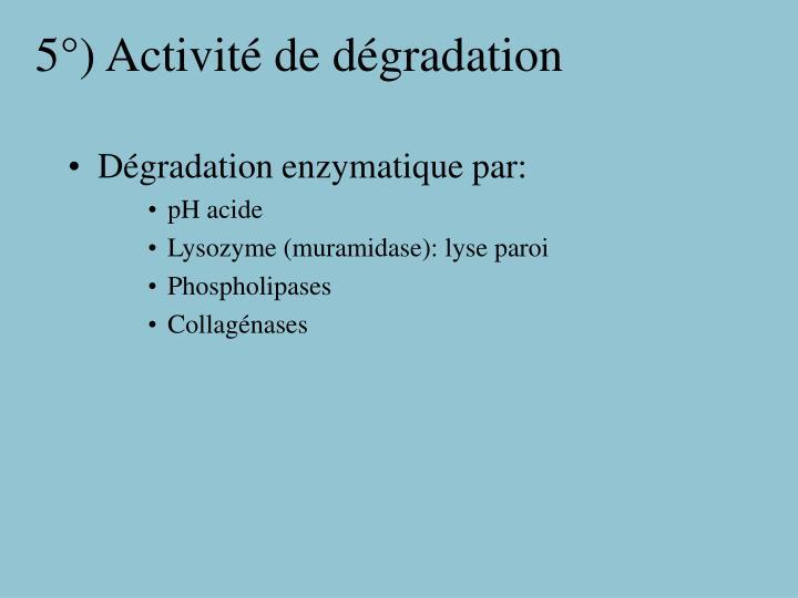 5°) Activité de dégradation