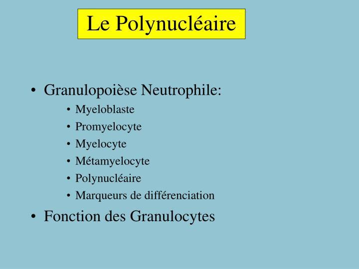 Le Polynucléaire