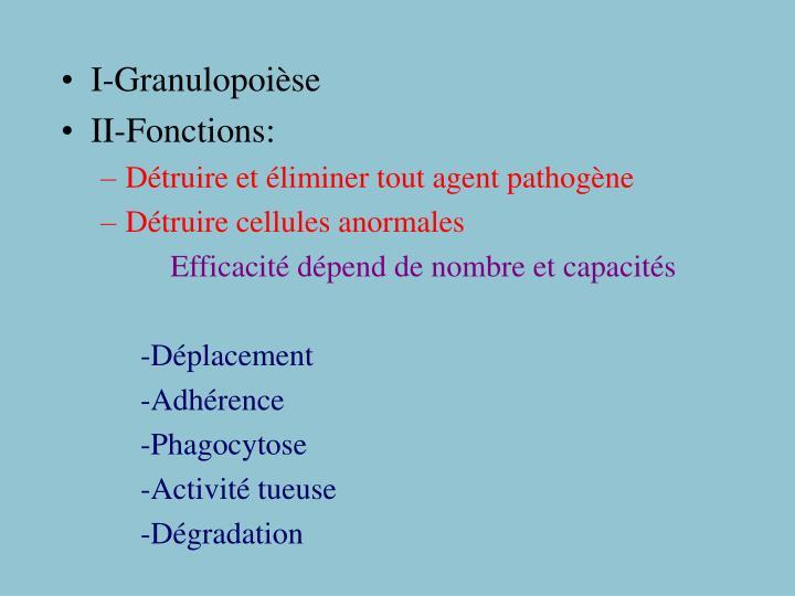 I-Granulopoièse
