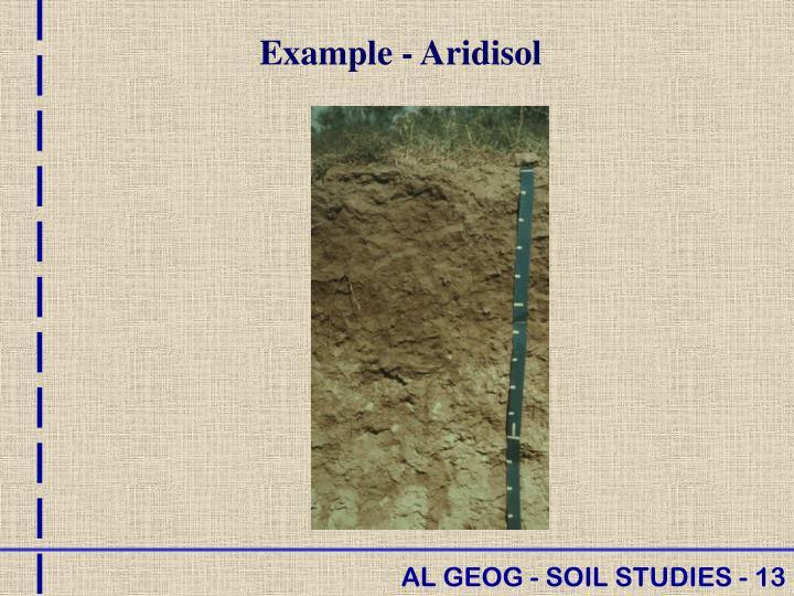 Example - Aridisol