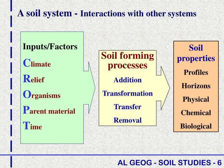 A soil system -