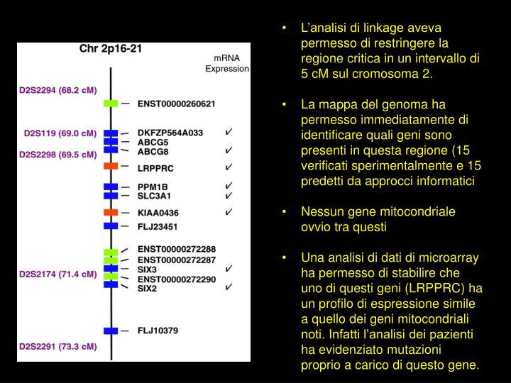 L'analisi di linkage aveva permesso di restringere la regione critica in un intervallo di 5 cM sul cromosoma 2.
