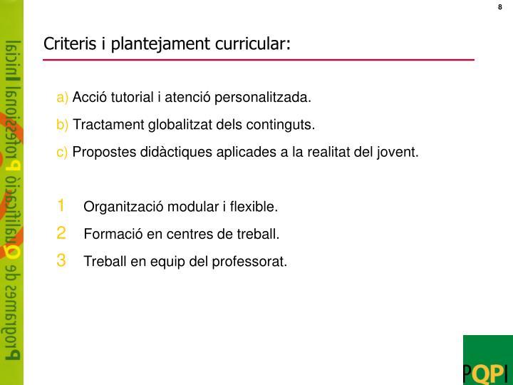 Criteris i plantejament curricular: