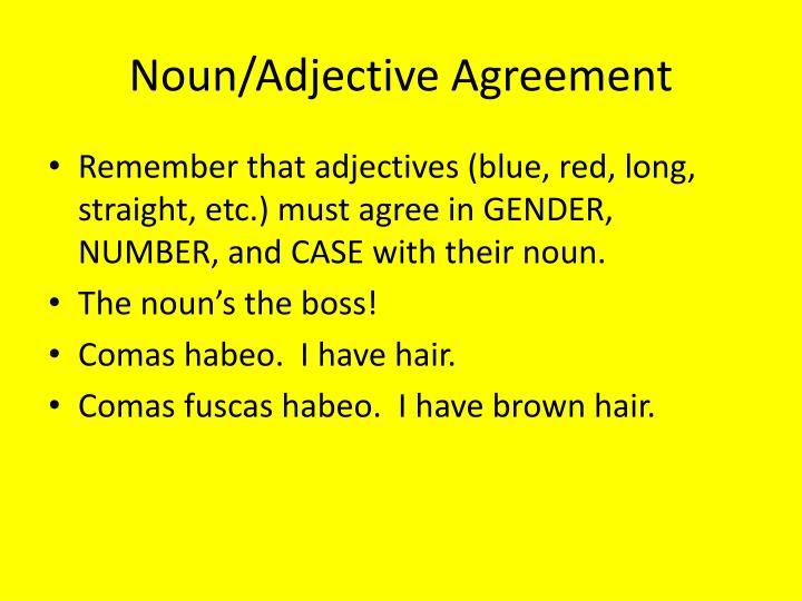Noun/Adjective Agreement