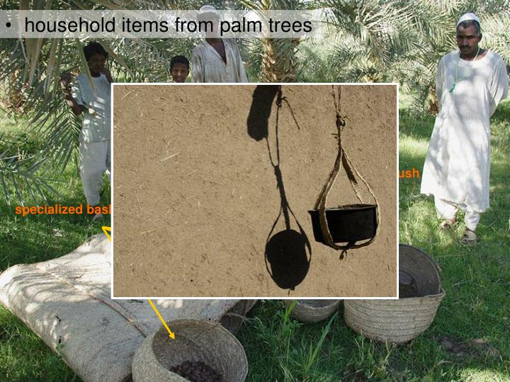 household items from palm trees