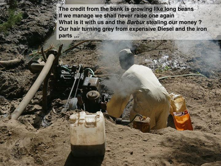 The credit from the bank is growing like long beans