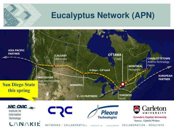 Eucalyptus Network (APN)