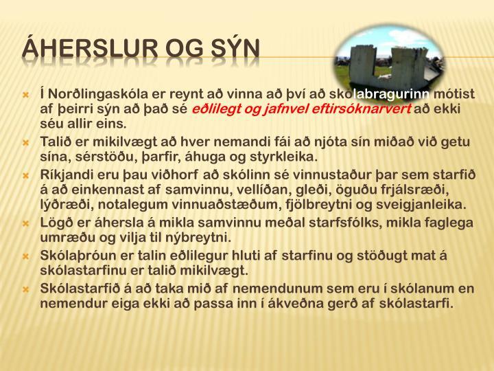 Í Norðlingaskóla er reynt að vinna að því að skó