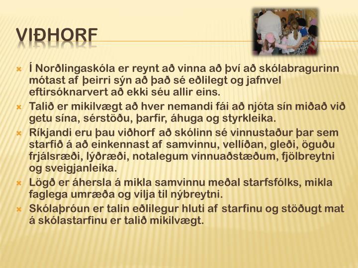 Í Norðlingaskóla er reynt að vinna að því að skólabragurinn mótast af þeirri sýn að það sé eðlilegt og jafnvel eftirsóknarvert að ekki séu allir eins.