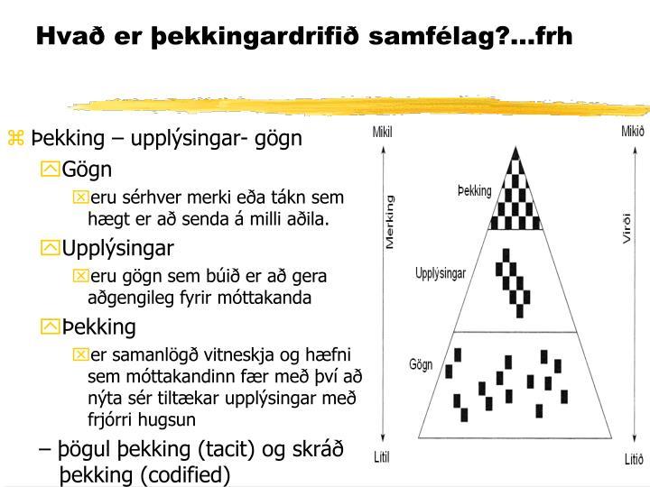 Hvað er þekkingardrifið samfélag?...frh