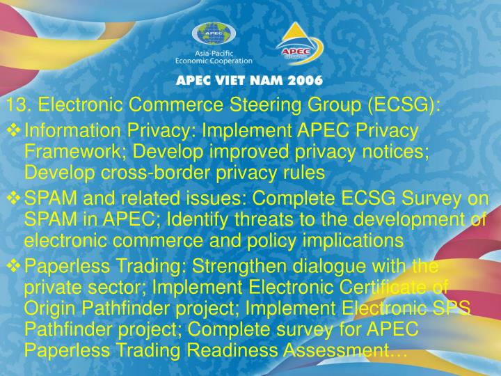 13. Electronic Commerce Steering Group (ECSG):