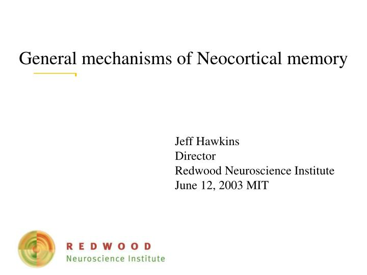 general mechanisms of neocortical memory