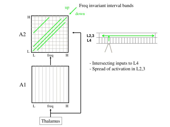 Freq invariant interval bands