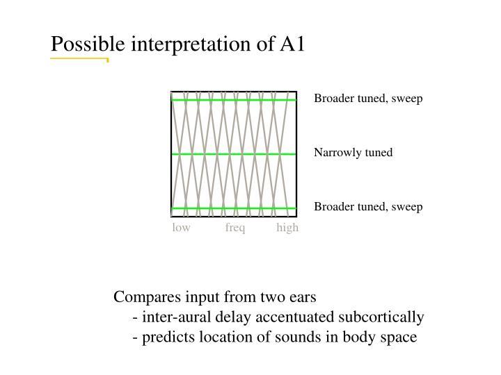Possible interpretation of A1