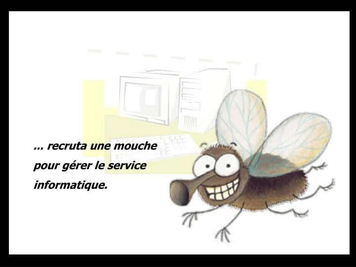 ... recruta une mouche