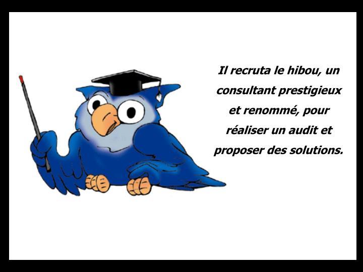 Il recruta le hibou, un consultant prestigieux et renommé, pour réaliser un audit et proposer des solutions.