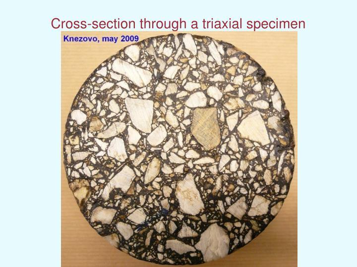 Cross-section through a triaxial specimen