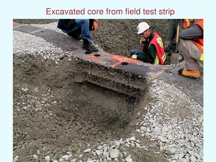 Excavated core from field test strip
