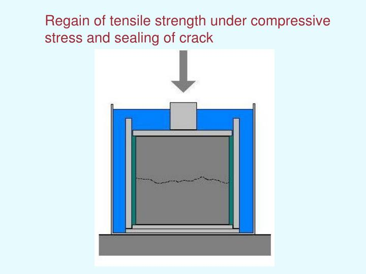 Regain of tensile strength under compressive stress and sealing of crack