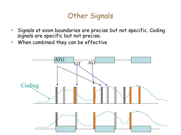 Other Signals