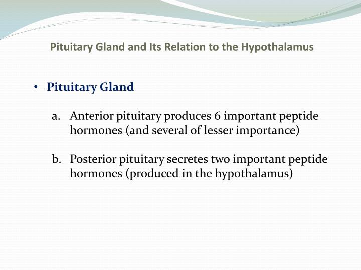 Pituitary Gland and Its Relation to the Hypothalamus