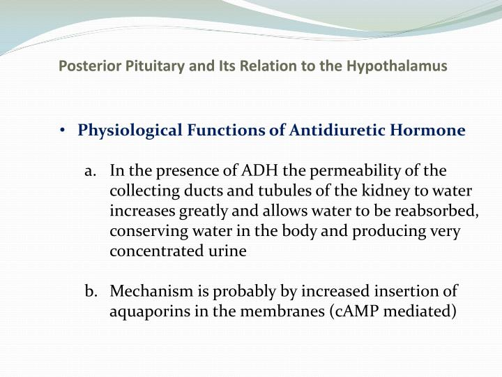Posterior Pituitary and Its Relation to the Hypothalamus