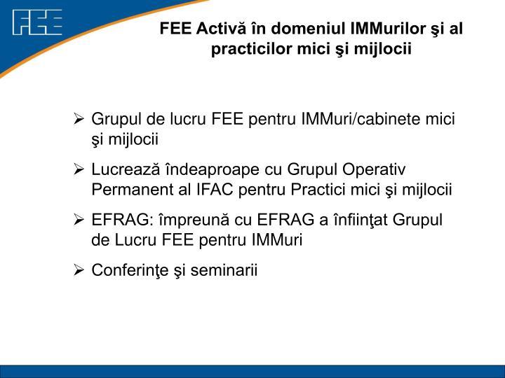 FEE Activă în domeniul IMMurilor şi al practicilor mici şi mijlocii