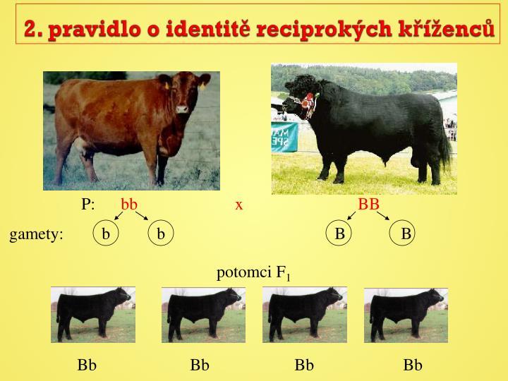 2. pravidlo o identitě