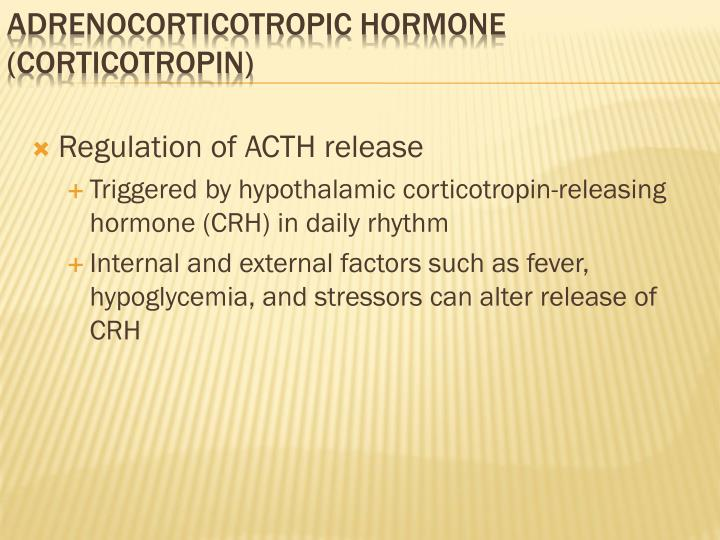 Regulation of ACTH release