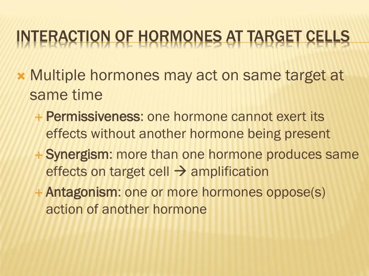 Multiple hormones may act on same target at same time