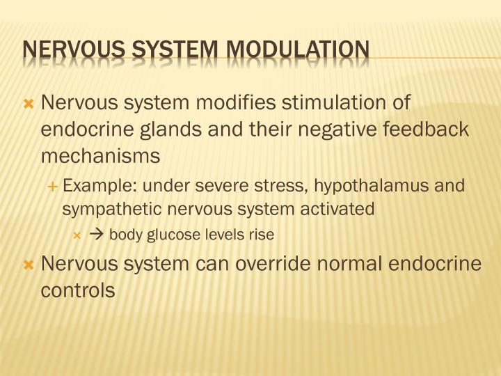 Nervous system modifies stimulation of endocrine glands and their negative feedback mechanisms