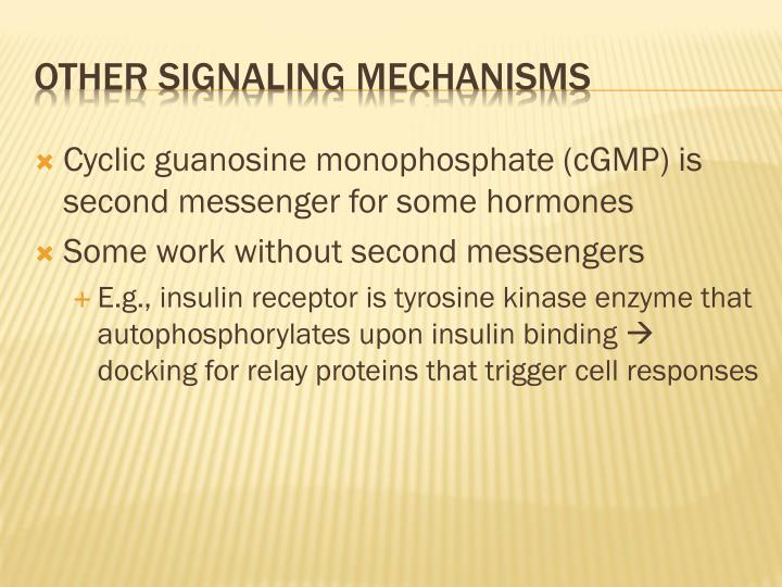 Cyclic guanosine monophosphate (cGMP) is second messenger for some hormones