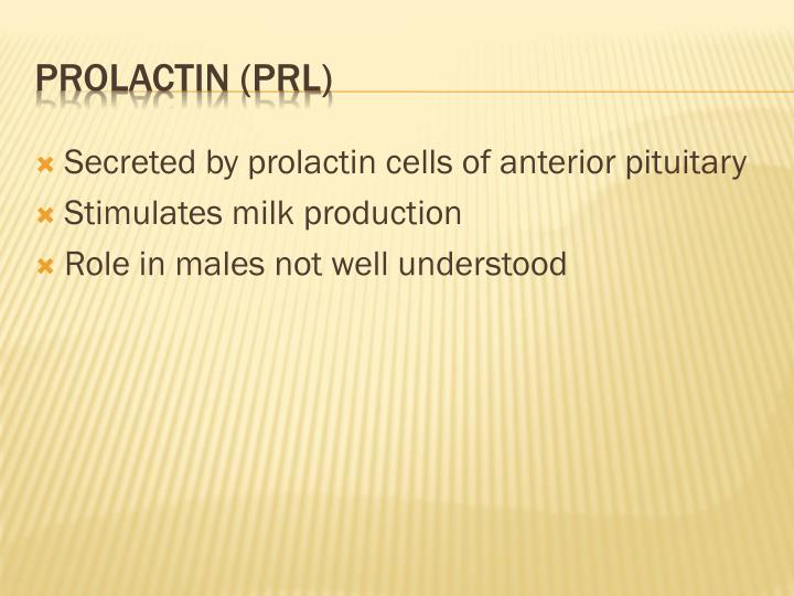 Secreted by prolactin cells of anterior pituitary