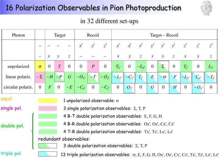 16 Polarization Observables in Pion Photoproduction