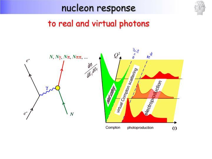 nucleon response