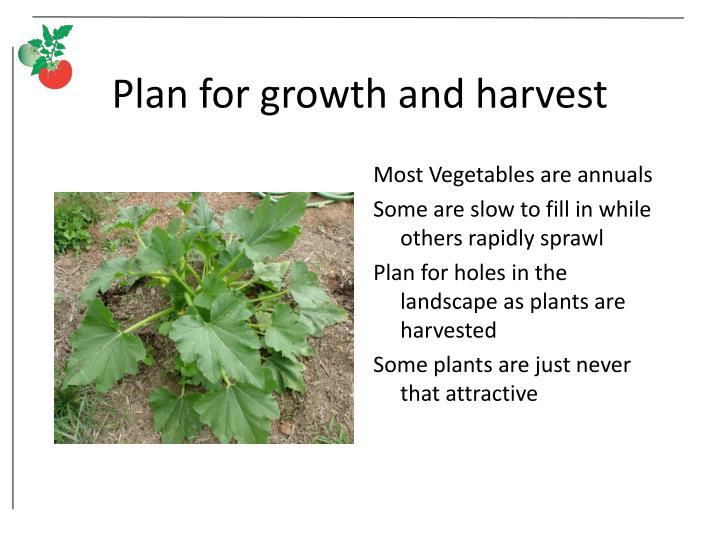 Plan for growth and harvest