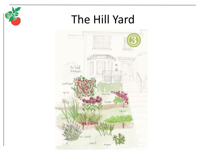 The Hill Yard