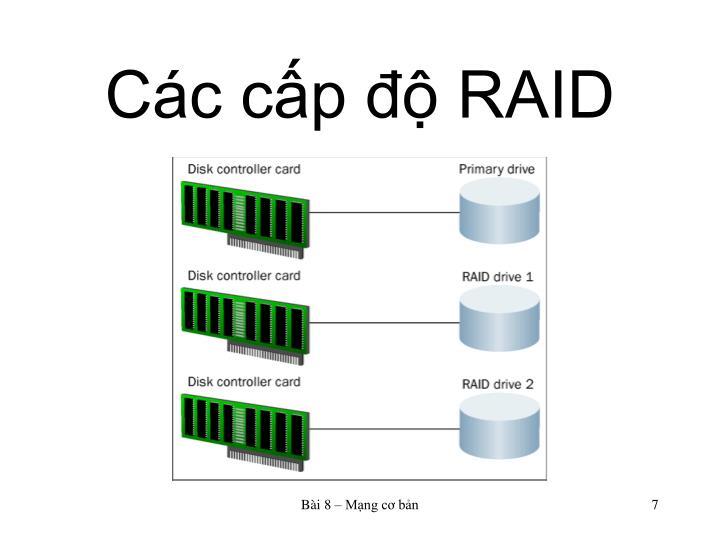 Các cấp độ RAID