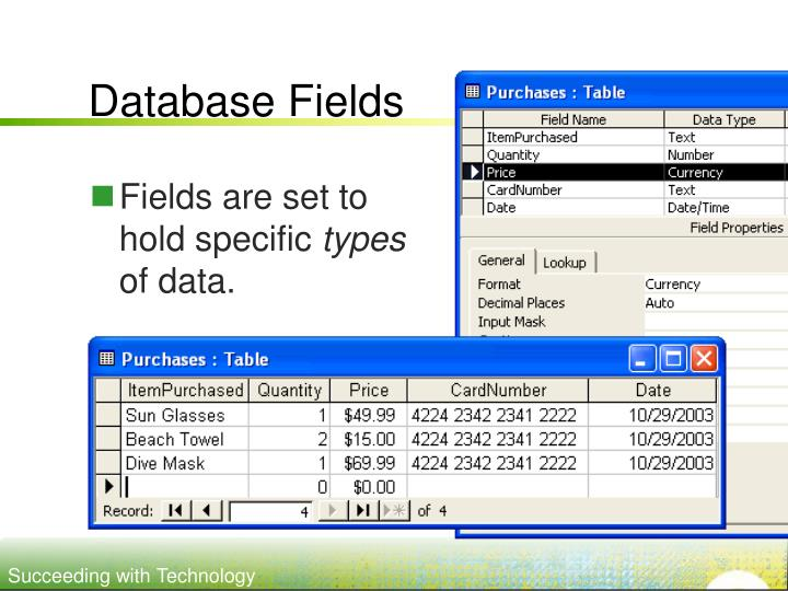 Database Fields