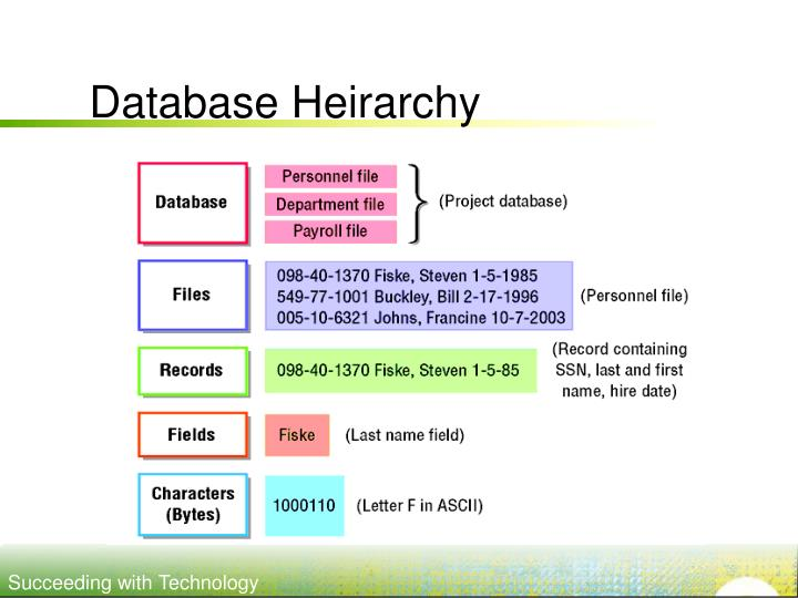 Database Heirarchy