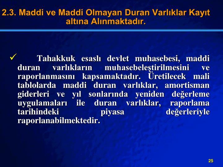 2.3. Maddi ve Maddi Olmayan Duran Varlklar Kayt altna Alnmaktadr.