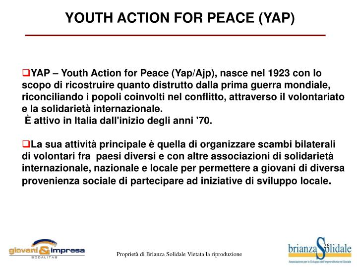 YOUTH ACTION FOR PEACE (YAP)