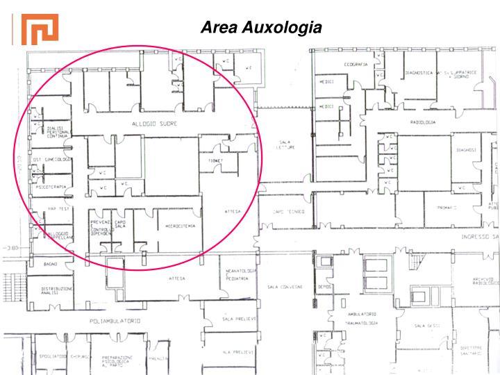Area Auxologia