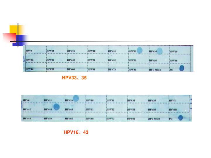 HPV3335