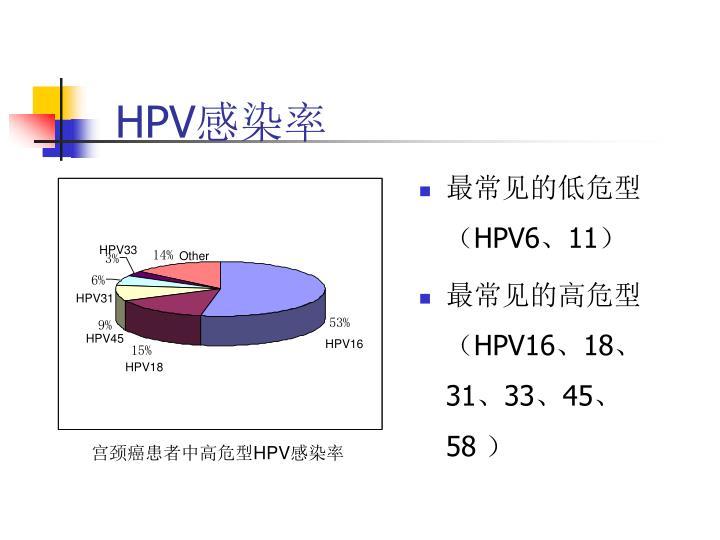 HPV33