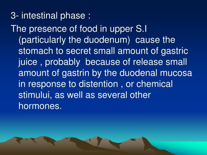 3- intestinal phase :