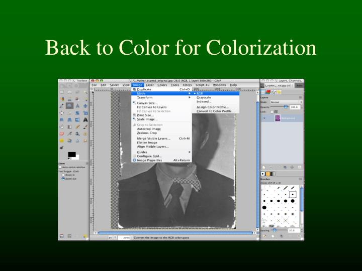 Back to Color for Colorization