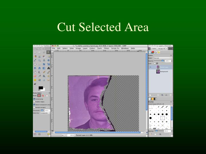 Cut Selected Area
