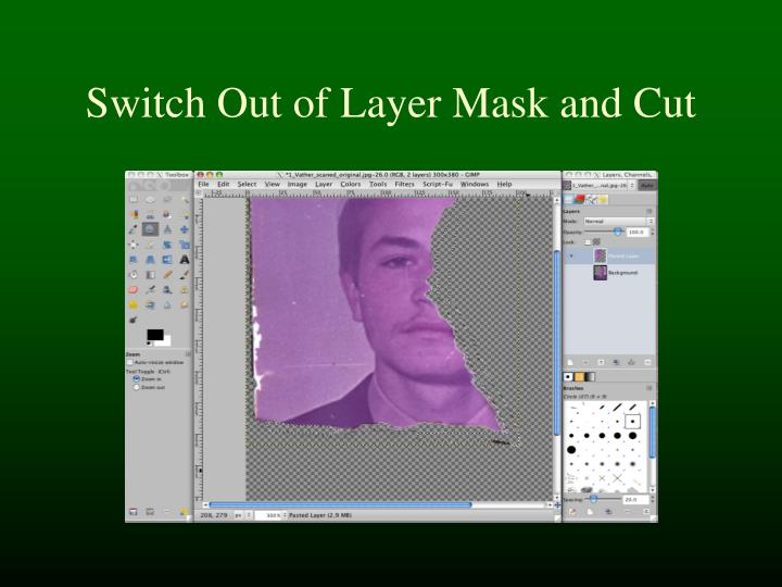 Switch Out of Layer Mask and Cut