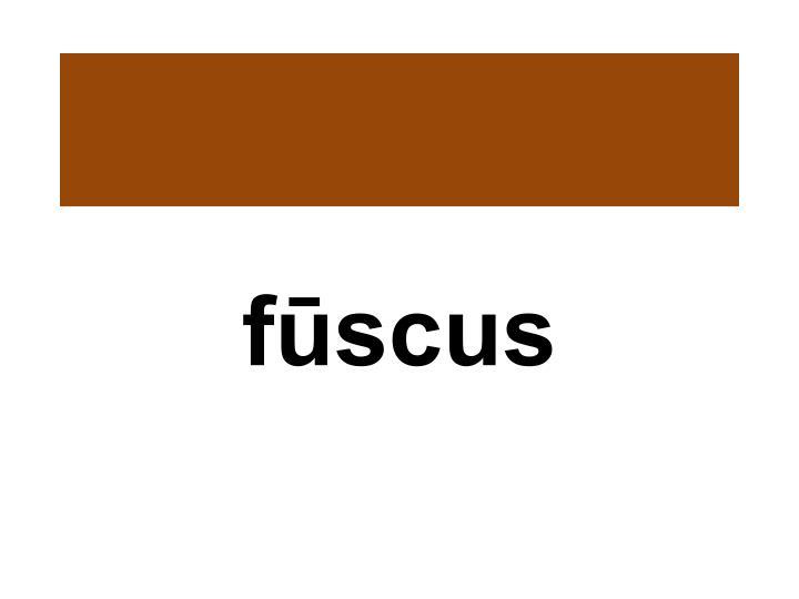 fūscus